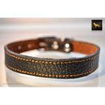 Tiny Leather Collar 3