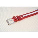 LPNY USA Pride Leather Dog Collar3