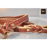 Fire Thick Leather Leash 3