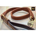 Rhino II Leather Leash