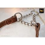 Halter Martingale Leather Collar