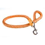 Monster Braid Leather Leash front