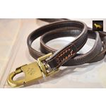 Horizon Flex Leather Leash