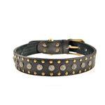 Warrior Leather Dog Collar