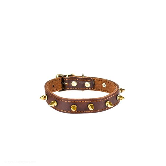Red Oak Gladiator Leather Collar