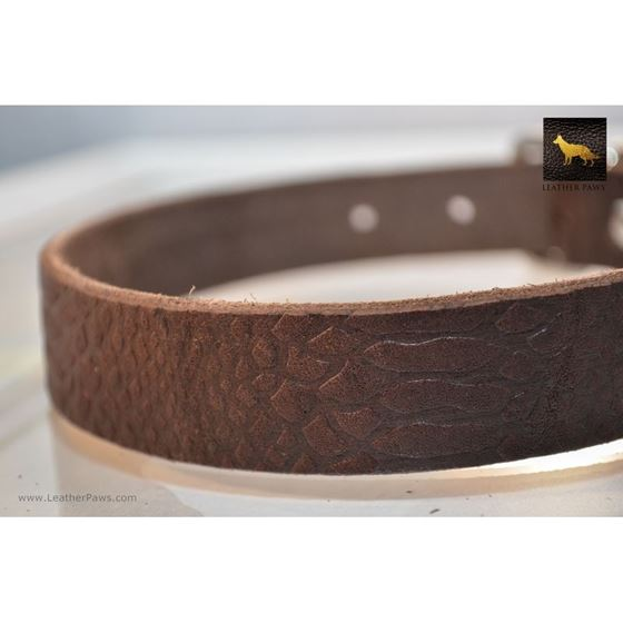Crocodile Leather Collar 3