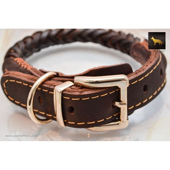 Thick Braid Leather Collar 2