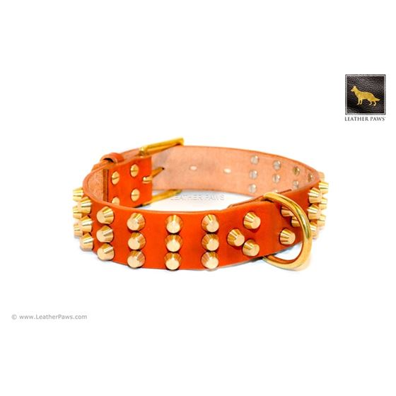 Gladiator V Cognac Studded Leather Collar
