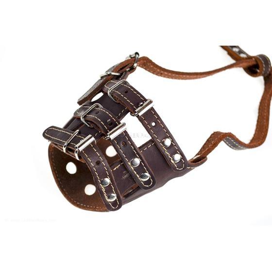 360 Leather Training Muzzle 2